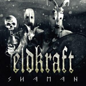 Eldkraft-Shaman-cover