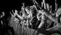 Frequency / Publikum, live, Menge