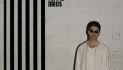 Noel Gallagher's High Flying Birds Cover