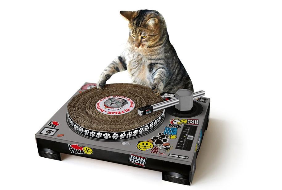 Katzen DJ-Pult